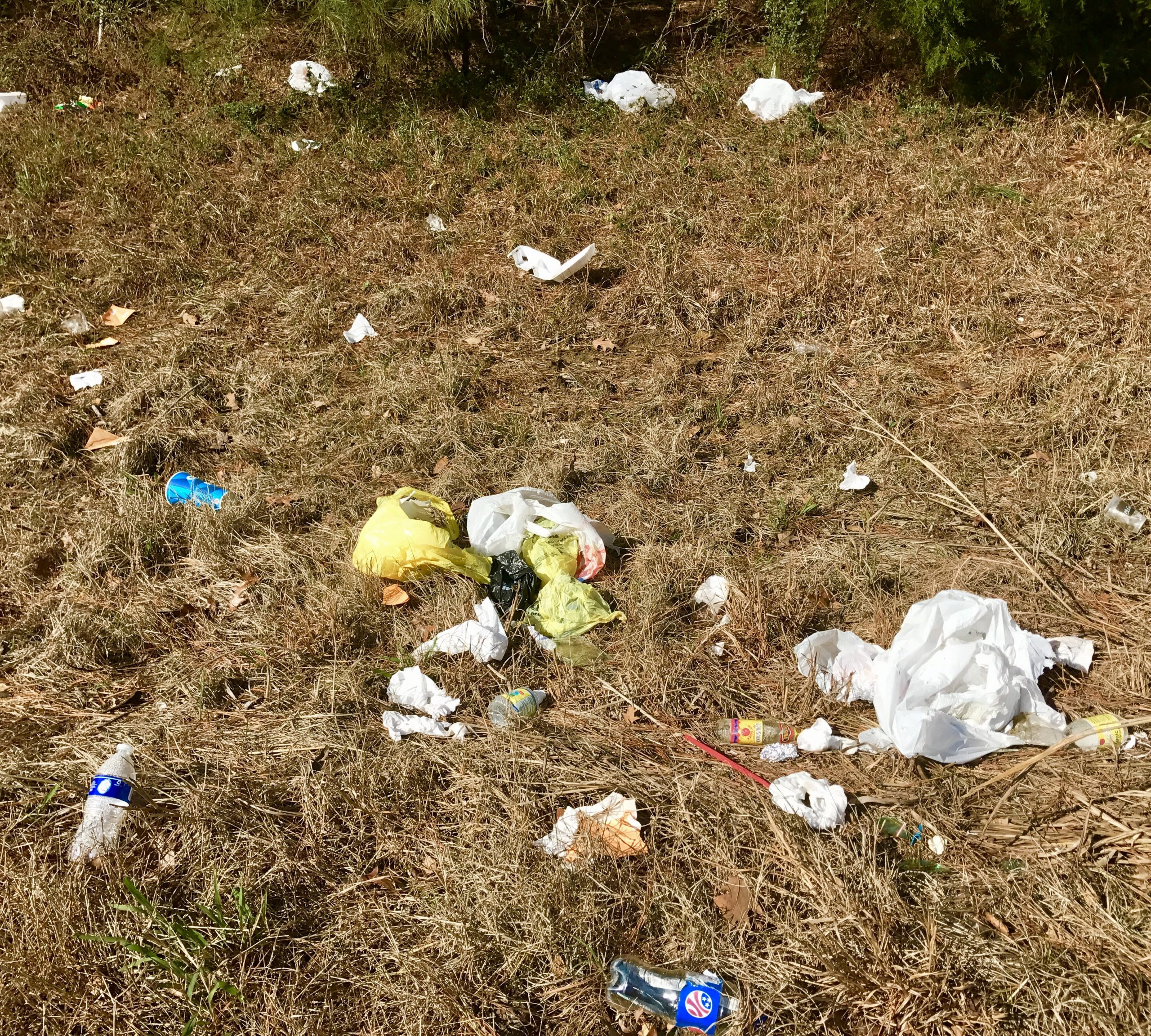 Intimate with Litter